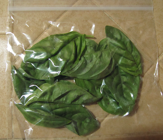 Basil Leaves in Ziplock