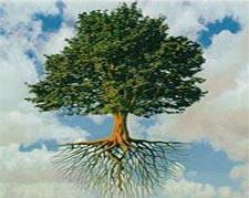 ~~~~पेड़ लगाये धरा बचाये~~~~