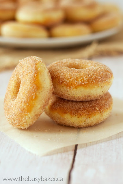 Skinny Old Fashioned Cake Donuts by The Busy Baker