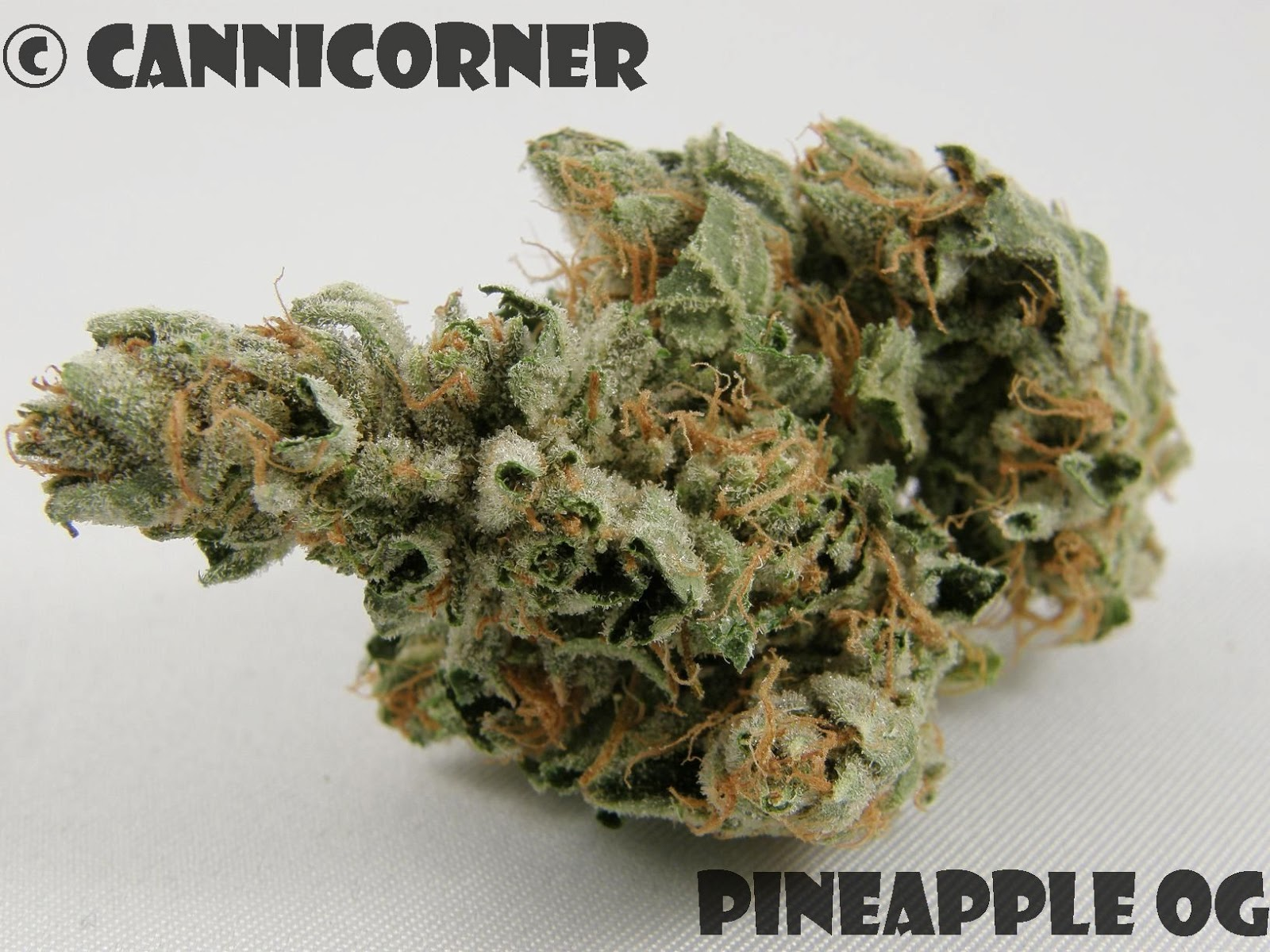Pineapple Kush Cannabis Strain Information  Leafly