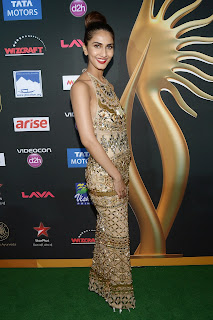 Vaani Kapoor looks stunning in skin colored Gown at IIFA Awards 2014 4