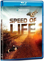 Speed Of Life 2010