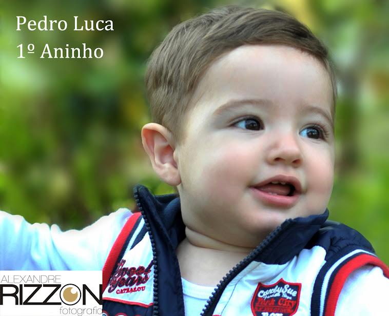 Pedro Luca - 1 aninho