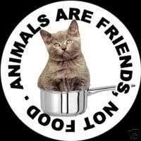 Animais são amigos, não alimento