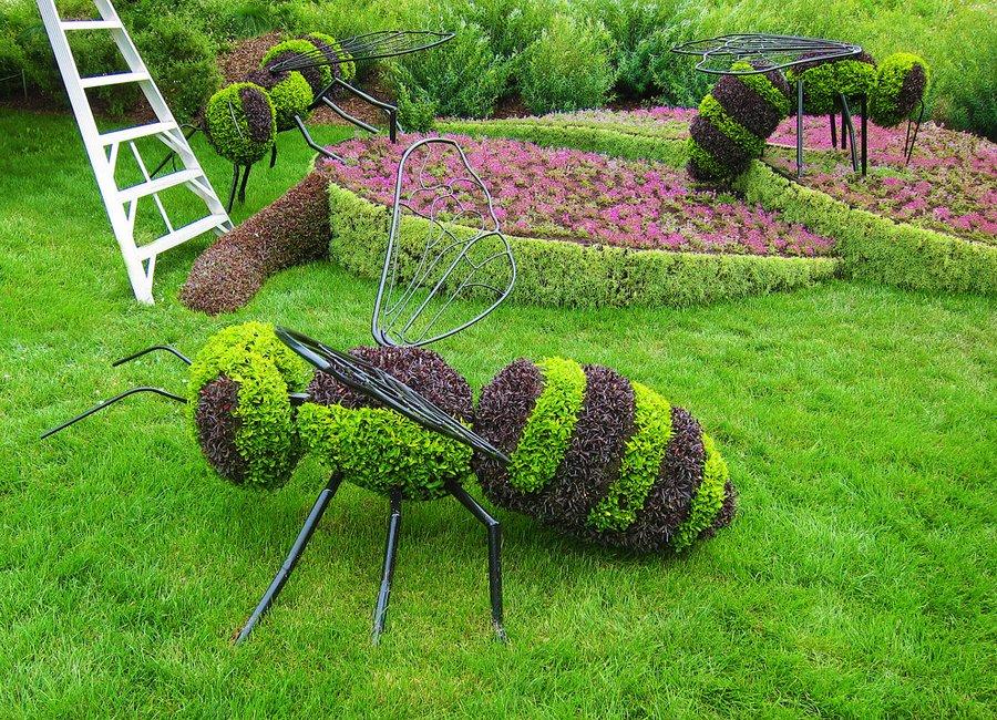 Цветочные фигуры в саду своими руками