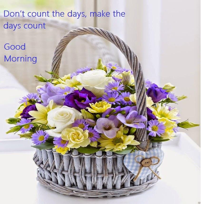 Short Motivational Quoteflowerdays Inspirational Quotes Nature