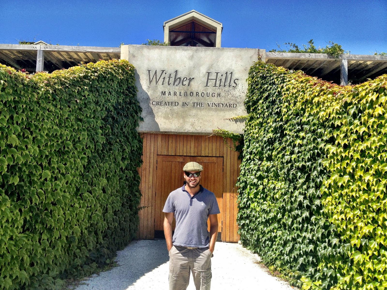 Outside Wither Hills vineyard, Marlborough, New Zealand