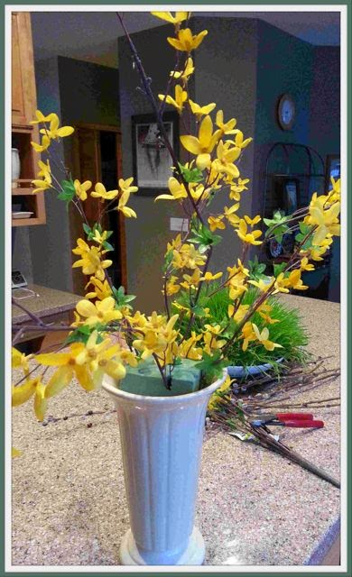 cutting the branches apart allows for an freer and more natural arrangement of the forsythia - Forsythia Arrangements