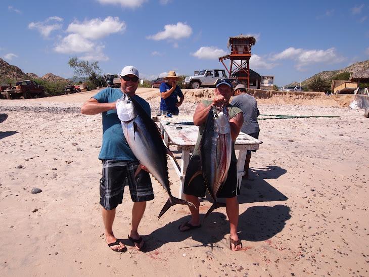 Cabo Tuna Fishin'