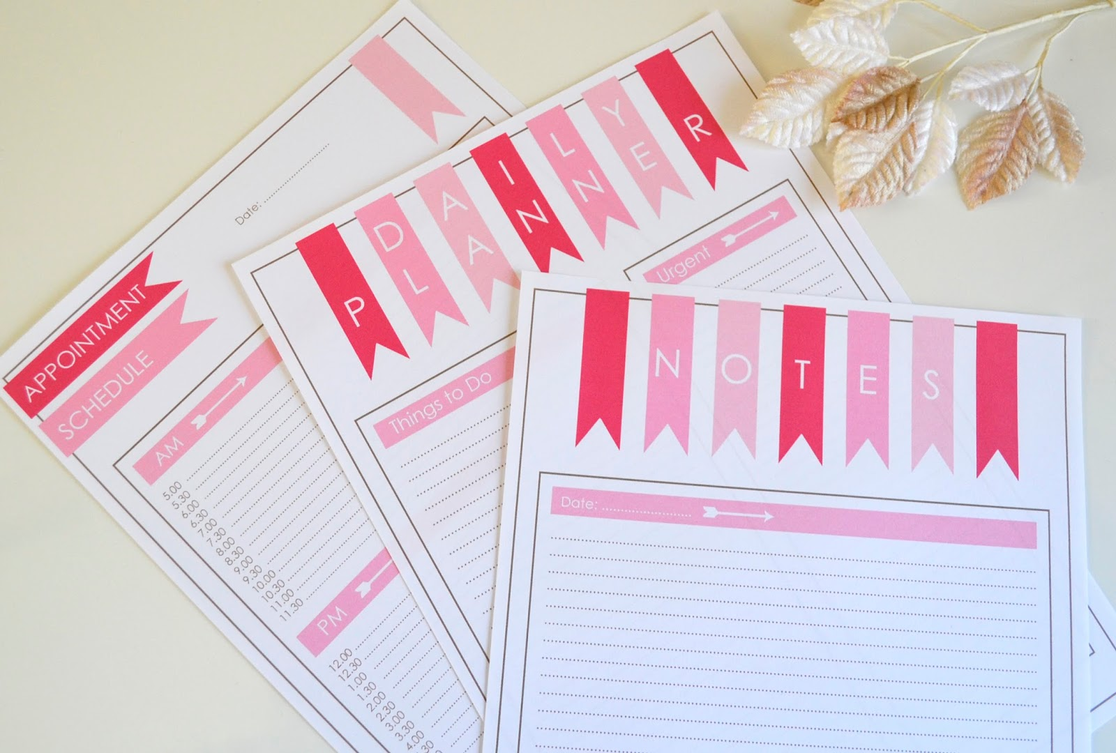 https://www.etsy.com/listing/199050546/daily-planner-schedule-and-notes-pink?ref=shop_home_active_6