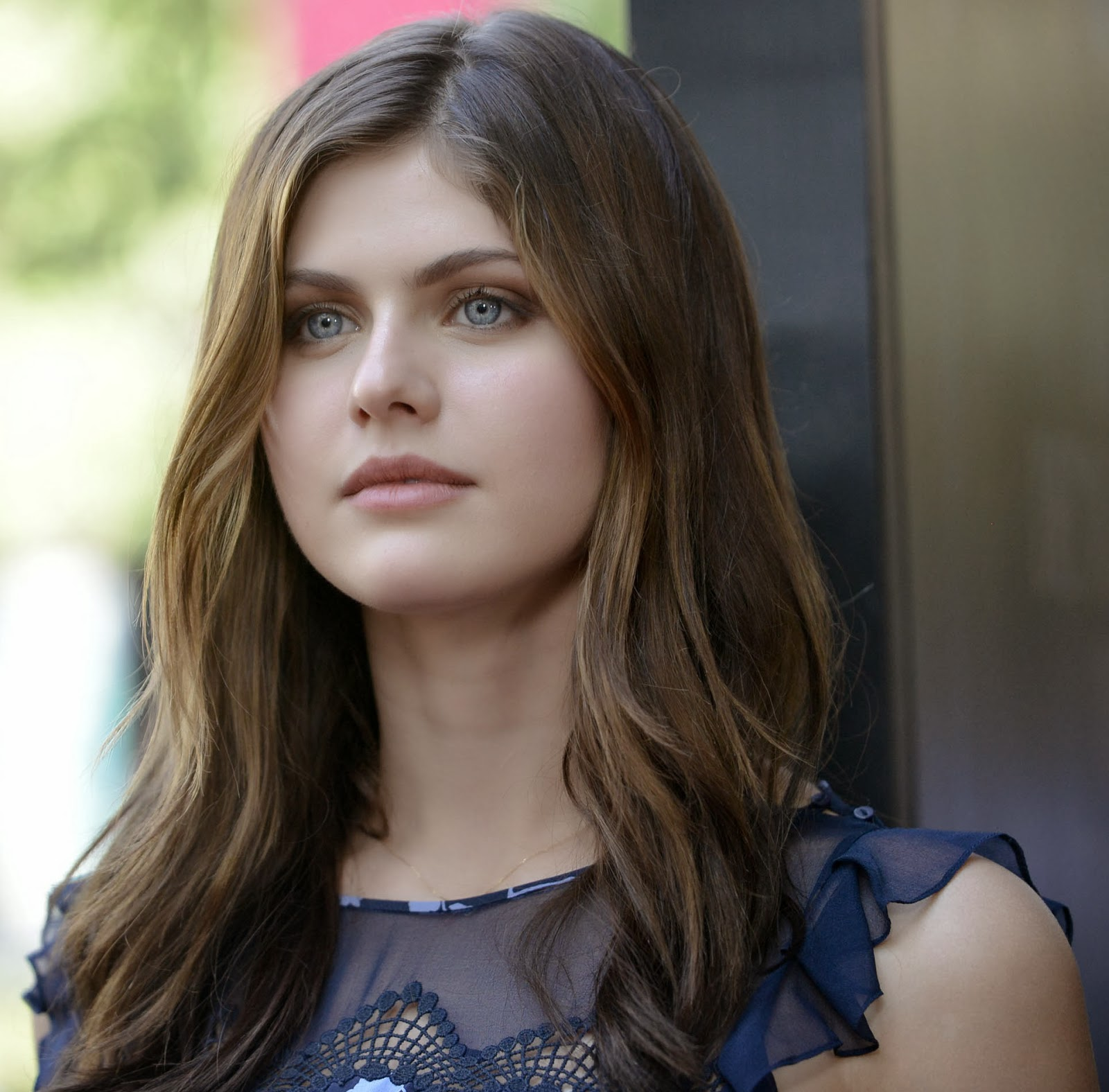alexandra daddario hd wallpaper pc