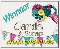 Cards & Scrap uitdaging 210