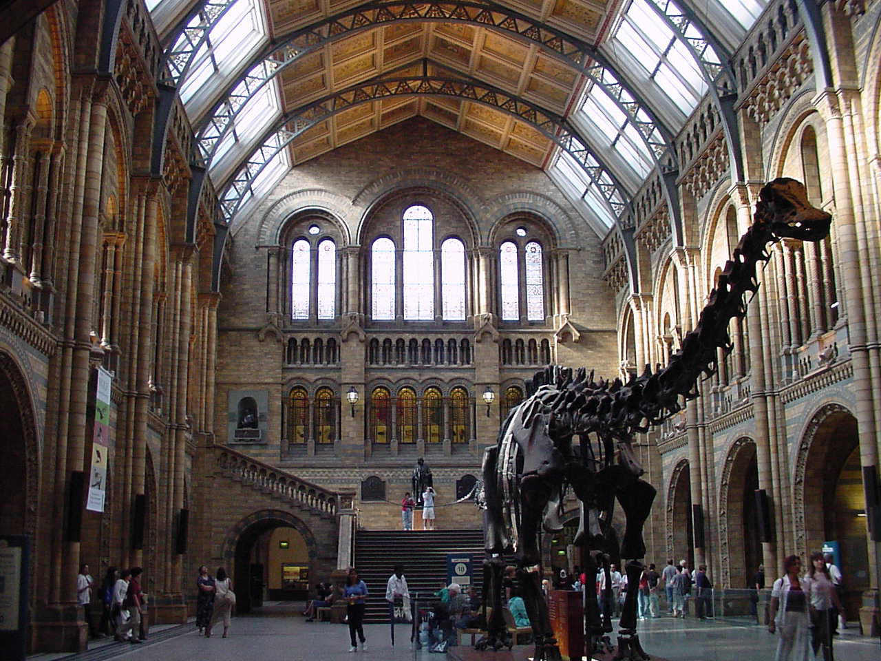 Foyer Museum Uk : World travel natural history museum