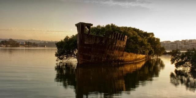 SS AYRFIELD, HOMEBUSH BAY, AUSTRALIA