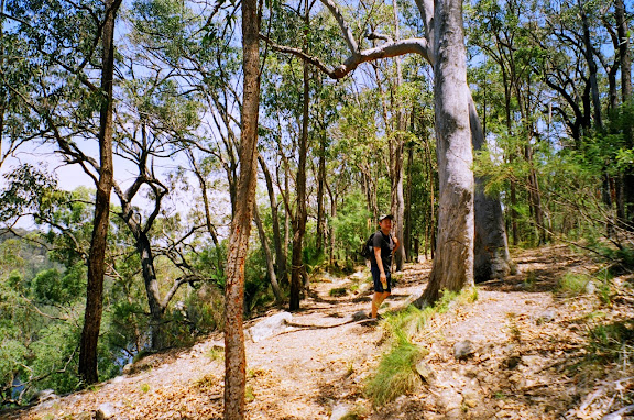 bushwalking Coolendel camping NSW
