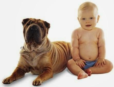 Benefits of Having Dog for Children