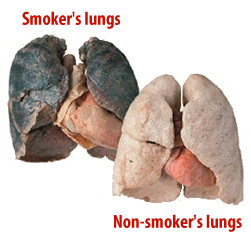 fikk kols har aldri røykt
