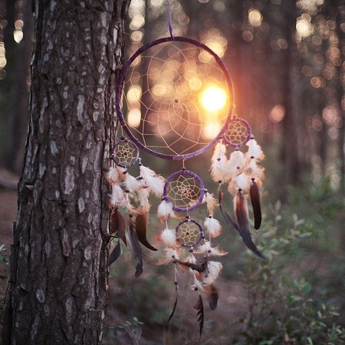 Pretty Little Monsters Stunning Different Types Of Dream Catchers And Their Meanings