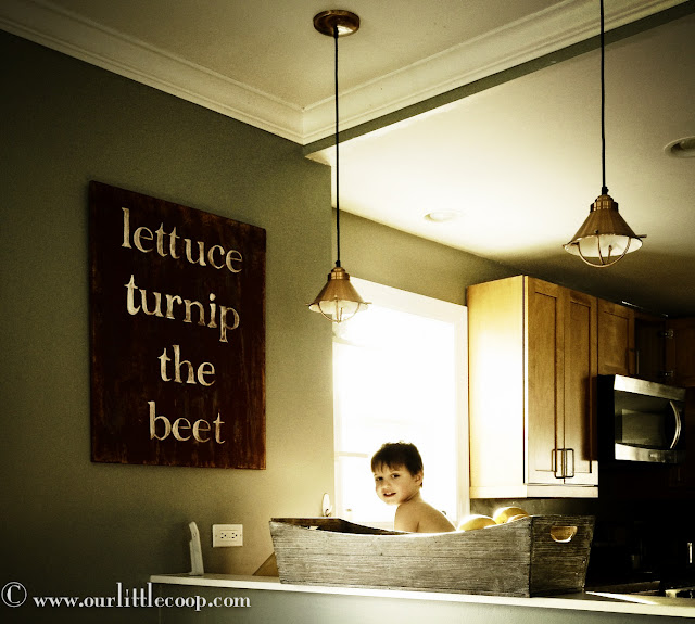diy wall art, lettuce turnip the beet, how to, paint, wood art, plywood, boy, rustic