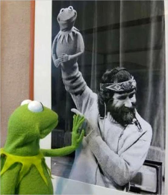 jim henson rana gustavo frog foto curiosa