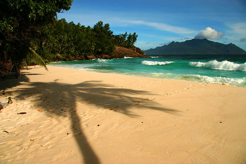 Image hotlink - 'http://1.bp.blogspot.com/-2mCzcA-jxlU/TepGSbpAqfI/AAAAAAAAAWg/8GQpHb2Jqxo/s1600/a-secluded-beach-of-north-island1.jpg'