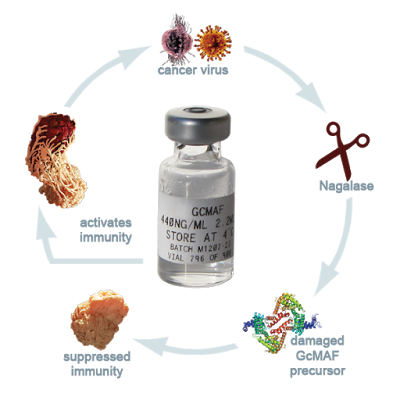 Dezvaluirea legaturii dintre vaccinare si cancer
