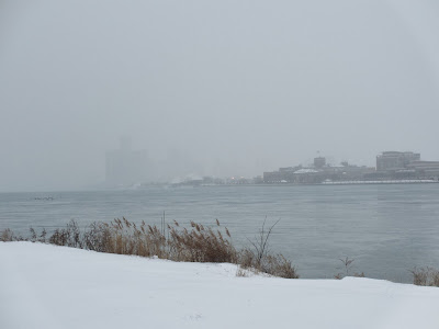 View of downtown Detroit from Belle Isle in the winter