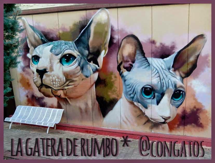 Mural gatos esfinge polideportivo San Blas.