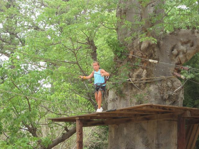 IMG_3328 ▷ La Reserva de Bandia y Accro Baobab Adventures
