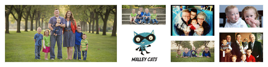 The Malley Cats