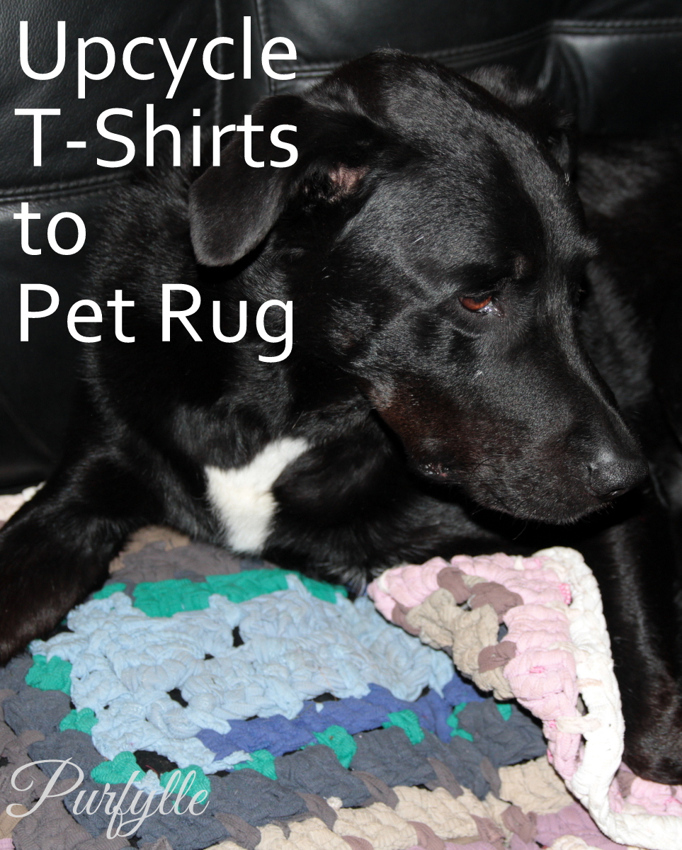 Upcyle T-Shirts to Pet Rug Crochet Project