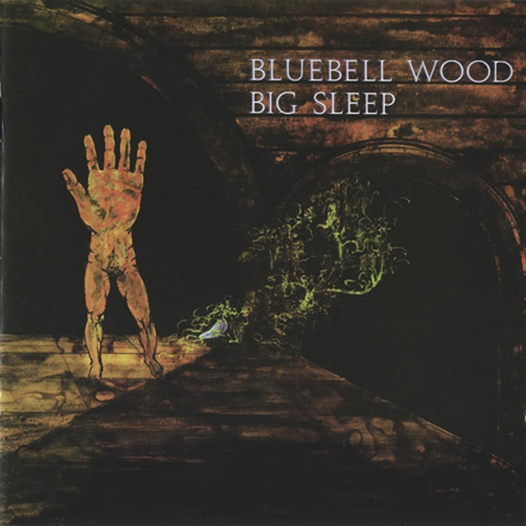 Big Sleep Bluebell Wood