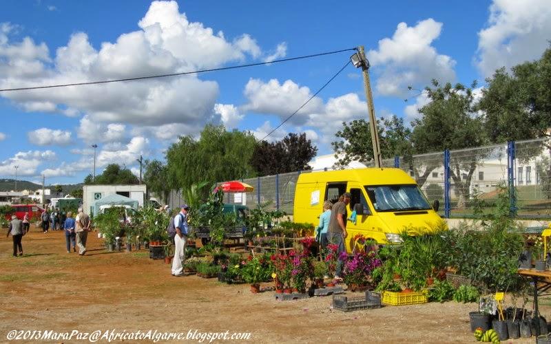 Mediterranean Garden Fair 2013-3