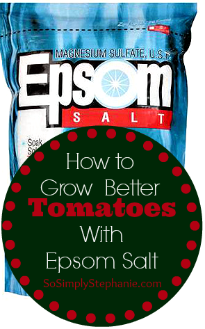 epsom salt tomatoes