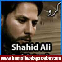 http://ishqehaider.blogspot.com/2013/11/shahid-ali-baltistani-nohay-2014.html