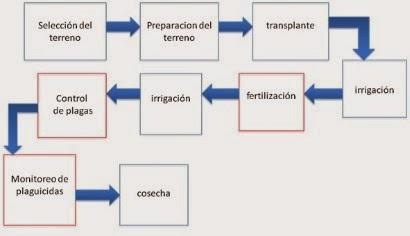 Informatica lll manipular imagenes lineas auto formas y word un diagrama de flujo puede presentar un proceso progresin o estructura con imgenes fcilmente legibles y una cantidad mnima de texto ccuart Images