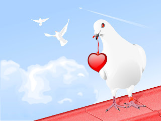 Pigeon Brings Love Wallpaper 1600x1200