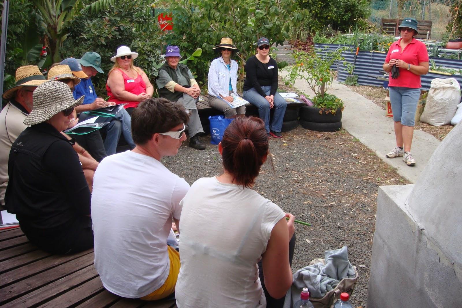kiama community garden kiamagardens gmail com starting a