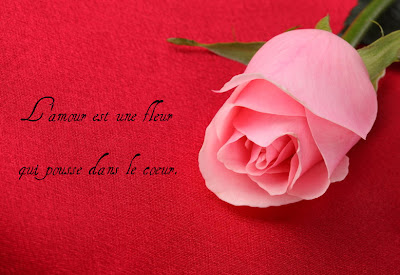proverbe_image