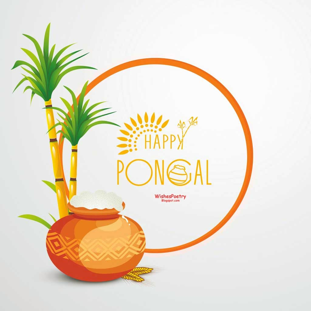 Pongal Greetings SMS Messages With-Images