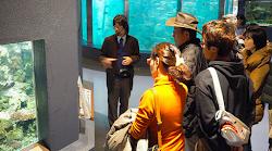 白浜水族館ガイドツアー:詳しくは下の画像をクリック
