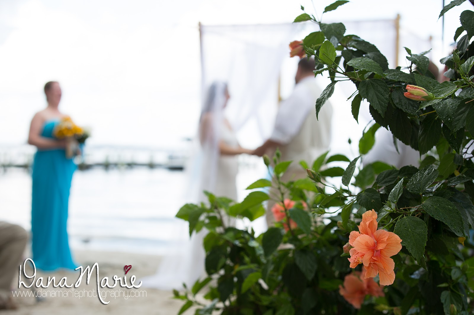 Rehoboth beach hotel wedding