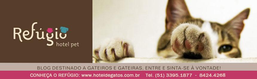 Refúgio Hotel para Gatos - Porto Alegre/RS
