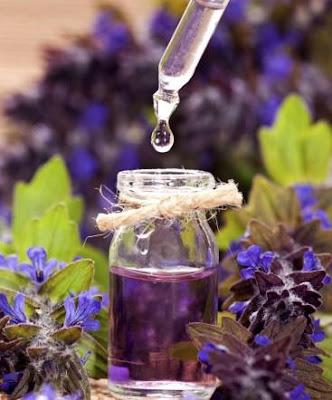 9 Kegunaan Minyak Bunga Lavender