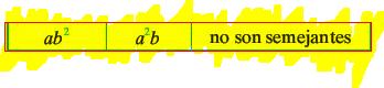 ejemplo_término_No_semejante.