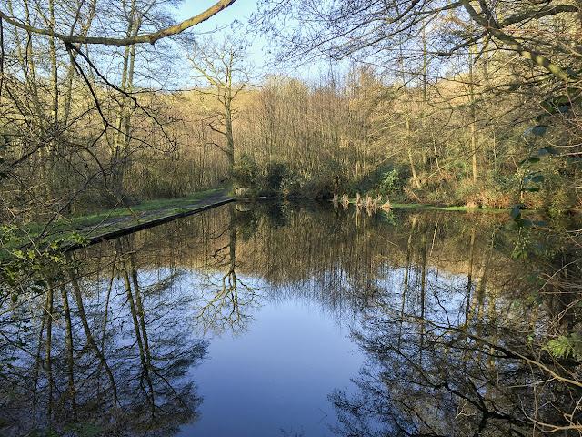 Toys Hill pond, December 2015
