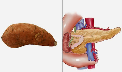 10 Foods Shaped Organs are similar to Need It !