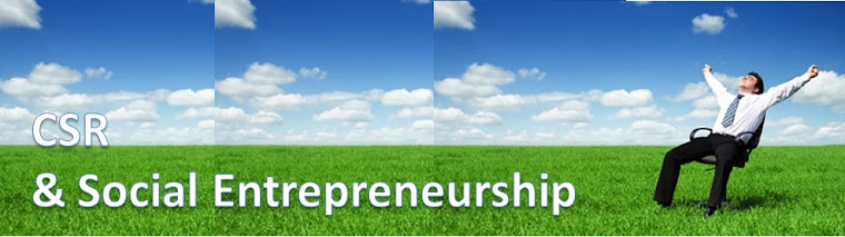 definition of social entrepreneurship pdf