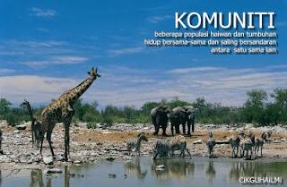Spesies, Populasi, Komuniti, Habitat dan Ekosistem