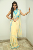 Nilofer sizzling saree photos-thumbnail-11